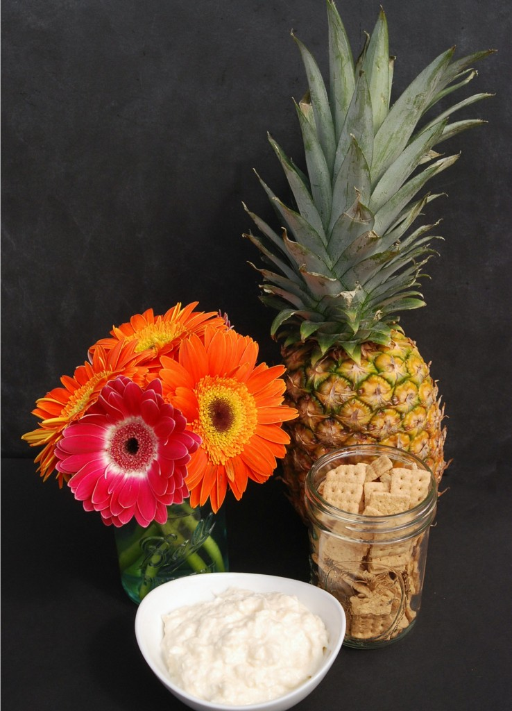 Pina Colada Dip from Endlessly Inspired