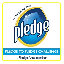 I'm taking the Pledge-to-Pledge Challenge