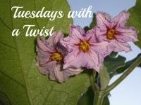 tuesdays with a twist
