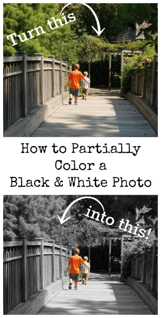 Learn how to color just part of a black and white photo