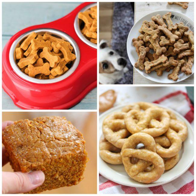 A collection of 20 fun homemade dog treat recipes.